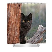 Spooky Shower Curtain