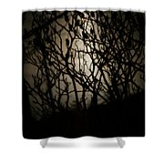 Spooky Sumac Shower Curtain