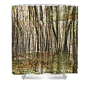 Spooky Woods Shower Curtain