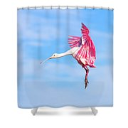 Spoonbill Ballet Shower Curtain