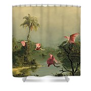 Spoonbills In The Mist Shower Curtain