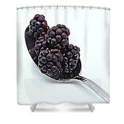 Spoonful Of Blackberries Shower Curtain