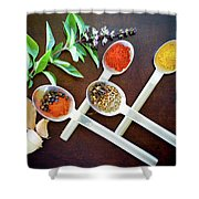 Spoons N Spices 3 Shower Curtain