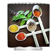 Spoons N Spices Shower Curtain