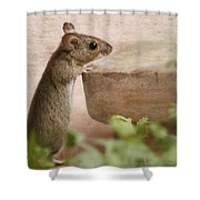 Sports Mouse Shower Curtain