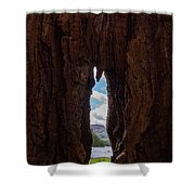 Spot The Lake Shore View Through The Hollow Tree Trunk Shower Curtain