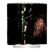 Spotlight In The Woods Shower Curtain