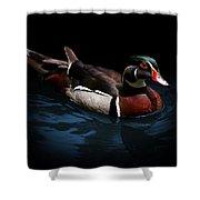 Spotlight On A Wood Duck Shower Curtain