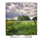 Spotlight On Spring Shower Curtain