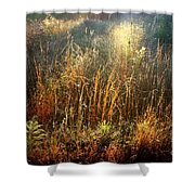 Spotlight On The Marsh Shower Curtain