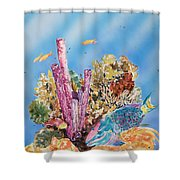 Spotlight Parrotfish Shower Curtain