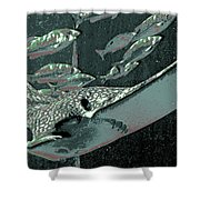 Spotted Eagle Ray Shower Curtain