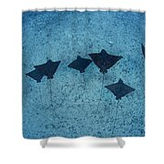 Spotted Eagle Rays Shower Curtain by Dave Fleetham - Printscapes