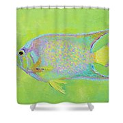 Spotted Tropical Fish Shower Curtain