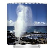 Spouting Horn Blow Hole Shower Curtain