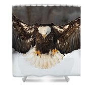 Spread Eagle Shower Curtain