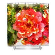 Spread Petals Of A Red Rose Shower Curtain