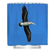 Spread Your Wings And Fly Shower Curtain