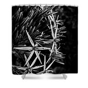 Spreading Your Petals Shower Curtain