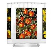 Spring - Desert Style 2 Shower Curtain