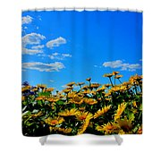 Spring 2015-pic 31 Shower Curtain