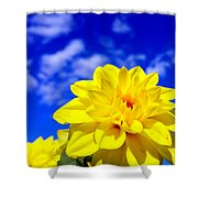 Spring 2015-pic18 Shower Curtain