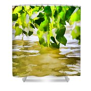 Spring 4 Shower Curtain