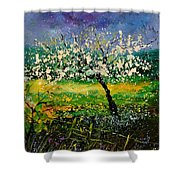Spring 450150 Shower Curtain