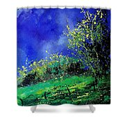 Spring 459060 Shower Curtain