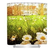 Spring. A Medow Spread With Daisies In Baden-baden, Germany Shower Curtain