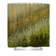 Spring Abstract Shower Curtain
