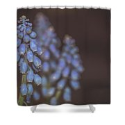 Spring. Shower Curtain