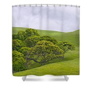 Spring At Del Valle Shower Curtain