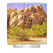 Spring At Joshua Tree Shower Curtain