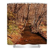 Spring At Red Rock Crossing Shower Curtain
