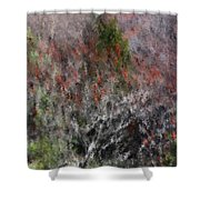 Spring At The Hacienda Shower Curtain
