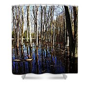 Spring At The Pond Shower Curtain