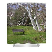 Spring Bench In Sycamore Grove Park Shower Curtain