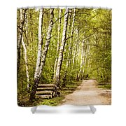 Spring Birches Woods Footpath Shower Curtain