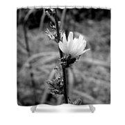 Monochrome Flower Series - Spring Bloom Shower Curtain