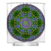 Spring Bloom Colors Mandala Shower Curtain