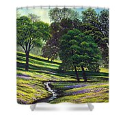 Spring Bloom Table Mountain Shower Curtain