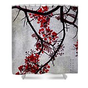 Spring Bloosom In Maldives. Flamboyant Tree II. Japanese Style Shower Curtain