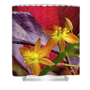 Spring Blossoms 2 Shower Curtain