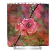 Spring Blossoms 9129 Idp_2 Shower Curtain