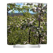 Spring Blossoms Day Shower Curtain