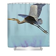 Spring Blue 2009 Shower Curtain