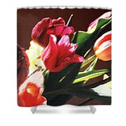 Spring Bouquet Shower Curtain by Steve Karol