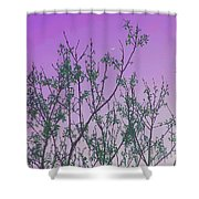 Spring Branches Lavender Shower Curtain