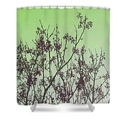 Spring Branches Mint Shower Curtain